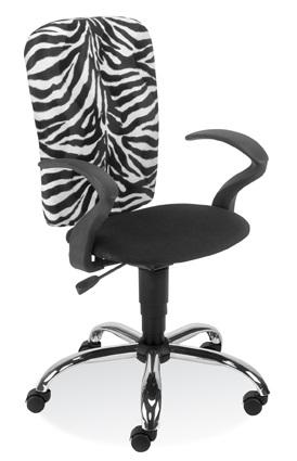 Ergoraider-GTP-steel-zebra