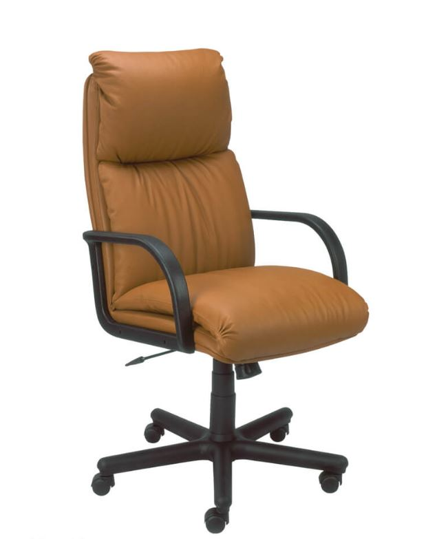 Vadovo kėdė Nadir su plastikiniu pagrindu.