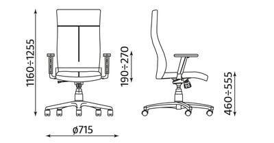 Vadovo kėdė Paladium R19T su reguliuojamais porankiais.