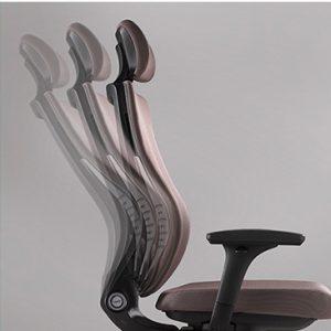 Ergonominė kėdė Trium su sinchroniniu mechanizmu.