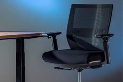 Specialios paaukštintos kėdės Anholt Up.