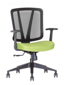 Ergonominės kėdės jaunimui- Dalaro.